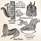 Set of vector elements and animals for hunting design