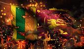 Sri Lanka Burning Fire Flag War Conflict Night 3D