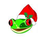 Gecko wearing santa hat