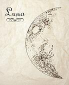 Vintage moon drawing
