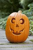 Happy Halloween pumpkin in the garden