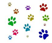 Colorful Paw Prints