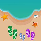 travel, view of beach, starfish, shells, slippers