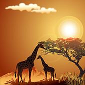 silhouette of giraffe, with jungle landscape and sun