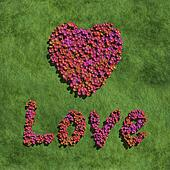 pink love and heart create by flowers with grass