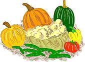 Basket Harvest fruits and vegetables
