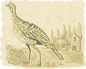 illustration of a Wild turkey with house in the background watercolor style