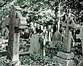 old stone tombstones