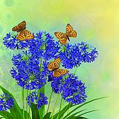 African lily floral background
