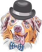 vector cartoon hipster dog Australian Shepherd