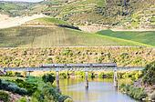 train on railway viaduct in Douro Valley, Portugal