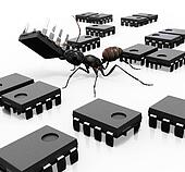 Ant Organizing Microchips