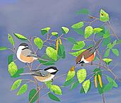 Chickadees with background
