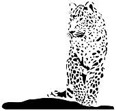 Black jaguar on white background