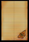 Ancient Japanese reed mat