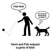 Fido Fetch