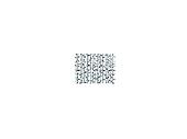 Illustration of the birch trunk background