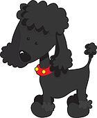 Poodle Black