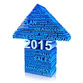 Business plan for improvement 2015.