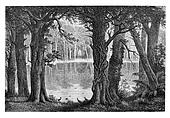 Lake Ligouri, vintage engraving