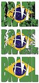 brazil text flag