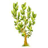 Cartoon Tree with Elliptical Leaves