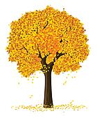 silhouette of autumn season yellow tree