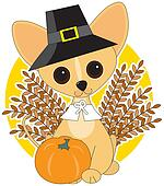 Chihuahua Thanksgiving