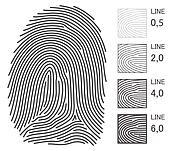 Fingerprint Vector Lines
