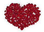 Rose petals heart