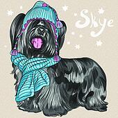 vector cartoon hipster dog Skye Terrier breed smiling