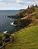 Norfolk Island Headland