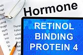 retinol binding protein 4 (RBP4)