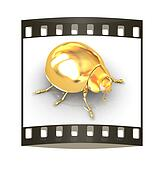 golden beetle. The film strip