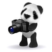3d Baby panda bear using his camera