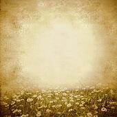 Daisies spring meadow vintage background