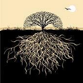 Tree silhouette with roots