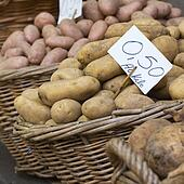 Group of Potatoes in local farmer market.