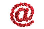 Red roses symbol isolated on white background