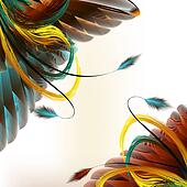 Feathers vector  background