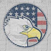 Eagle American icon