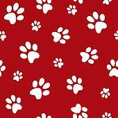 dog footprints