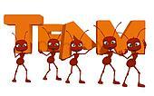 Teamwork, ants 3d cartoon