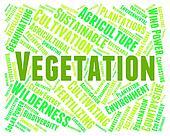 Vegetation Word Indicates Plant Life And Botanical