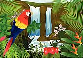 Macaw bird with waterfall backgroun