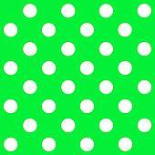 White Polka Dot on green background