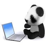 3d Baby Panda with laptop