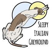 Illustration of a sleeping Italian greyhound