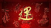 lucky calligraphy chinese new year background