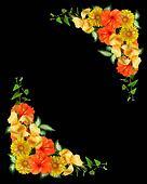 Tropical flowers corner design on black